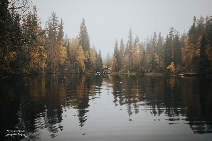 fall_into_finland_rimma_hossa_julma_olkky-4-5812609